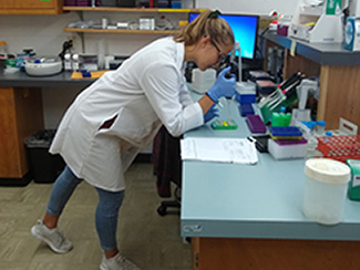 Summer REU Student Hannah Aycock working on her rockfish research project. Photo by Sandra Bohn.
